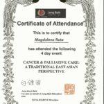 Dyplom 27_en