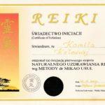 Dyplom Kurs Reiki I st. 2003.